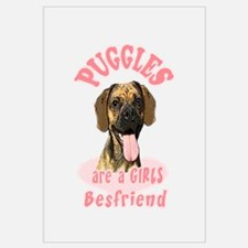 Puggles are a girls best frie