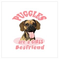Puggles are a girls best frie Canvas Art