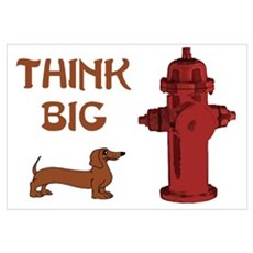 Think Big Framed Print
