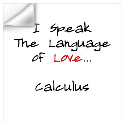 Calculus Love Language Wall Decal