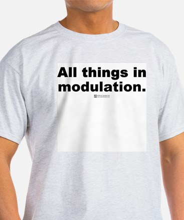 All things in modulation -  Ash Grey T-Shirt