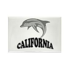 California Dolphin Souvenir Rectangle Magnet (10 p