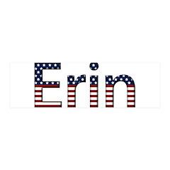 Erin Stars and Stripes 42x14 Wall Peel