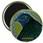 Framed Sumatra Rooster Magnet
