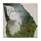 State of georgia Coasters