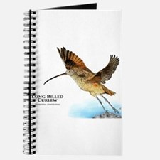 Long-Billed Curlew Journal