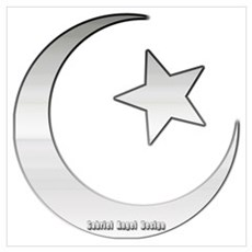 Silver Star and Crescent Canvas Art