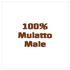 Mulatto Male/ Biracial Pride Poster