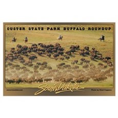Custer State Park Buffalo Roundup Poster