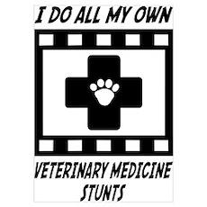 Veterinary Medicine Stunts Poster