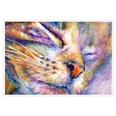 Sleeper Cat Framed Print
