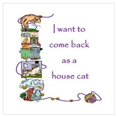 House Cat Canvas Art