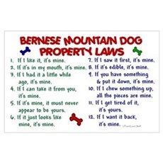 Bernese Mountain Dog Property Laws 2 Poster