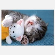 Cute & Adorable