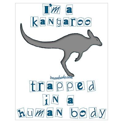I'm a Kangaroo Poster