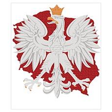 Poland White Eagle Design Poster