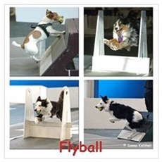 Flyball Canvas Art
