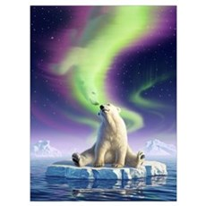 Arctic Kiss 1 Canvas Art