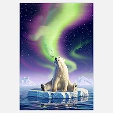 Arctic Kiss 1