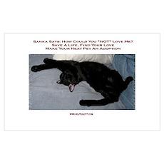 Adopt a Pet #1 Poster