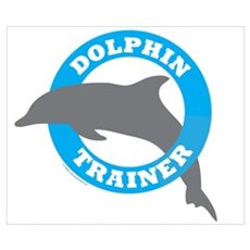 Dolphin Trainer Poster