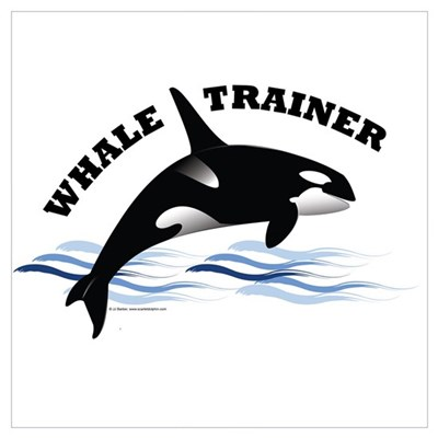 Whale Trainer Canvas Art