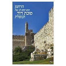 Sukkah of David Poster