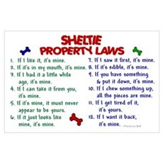 Sheltie Property Laws 2 Poster