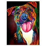 Pit bull Wrapped Canvas Art