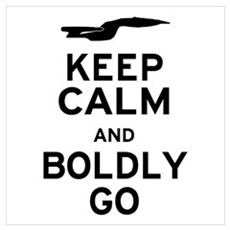 Keep Calm and Boldly Go Poster