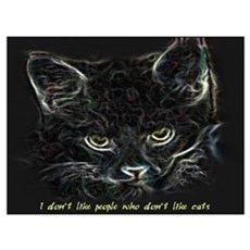 """""""I don't like people who don't like cats"""" Large Po Poster"""