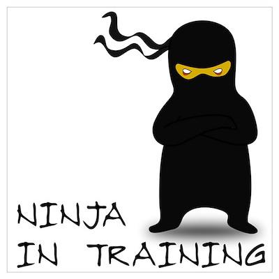 Ninja in Training Poster