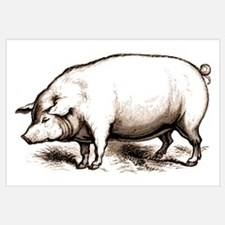 Victorian Pig