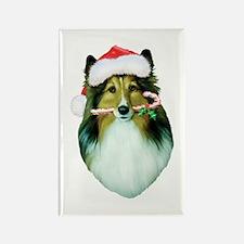 Shetland Sheepdog Christmas Rectangle Magnet 10 pk