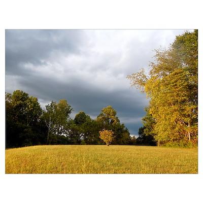 October meadow Poster