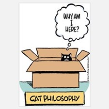 Cat Philosophy