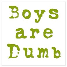Boys are Dumb Poster