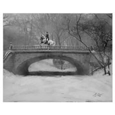 Dressage Horse, Winter Piroue 16x20 Framed Print