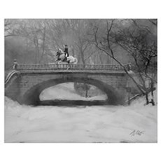 Dressage Horse, Winter Piroue 16x20 Poster