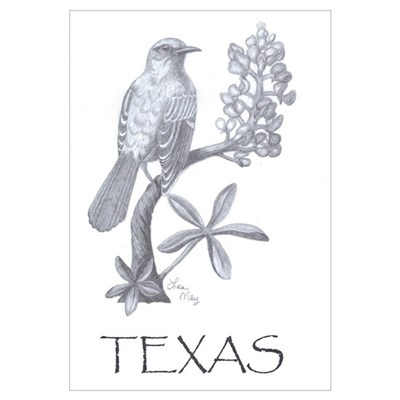 Texas Mockingbird/Bluebonnet Poster