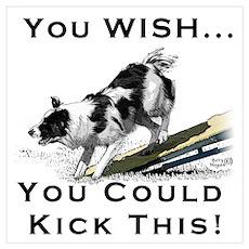 You Wish you could kick BC Bu Poster