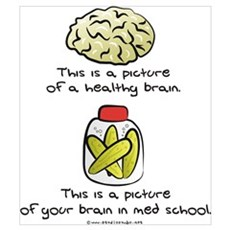 Med School Brain Poster
