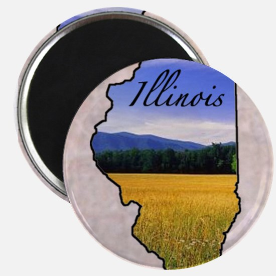 Cool State Magnet