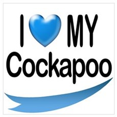 I Love My Cockapoo Poster