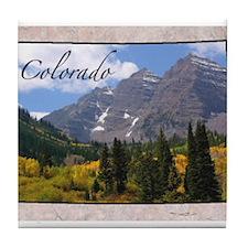 Unique Colorado Tile Coaster