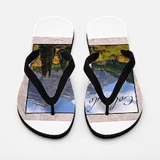 Cute Colorado state rams Flip Flops