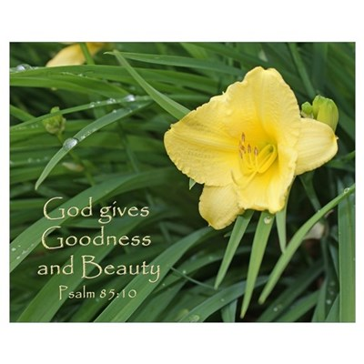 God gives Goodness and Beauty Framed Print