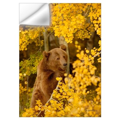 Autumn Grizzly Wall Decal