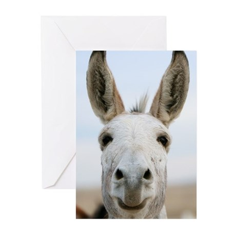 Over the fence Greeting Cards (Pk of 10)