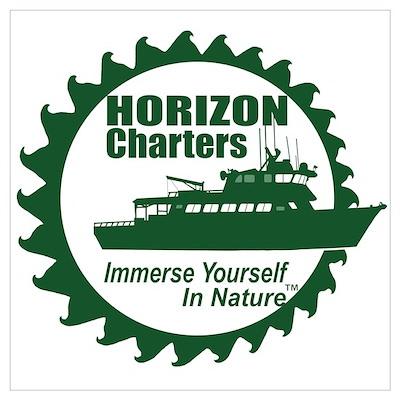HC Logo (Green) Poster